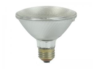 PAR 30 Halogen Replacement Bulb